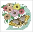 Butterfly Alpha D