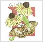 Butterfly Alpha E