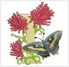 Butterfly Alpha I