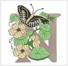 Butterfly Alpha N