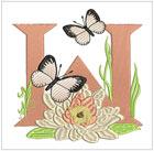 Butterfly Alpha W